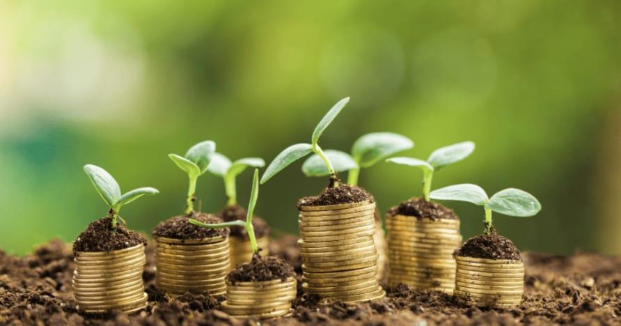 Tiền thưởng sòng bạc di động - Tất cả những gì cần biết