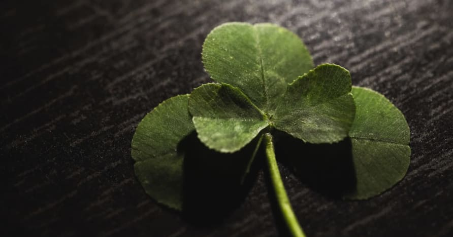 Bùa may mắn cho cờ bạc: Điều kỳ diệu đằng sau một hộp ngũ cốc